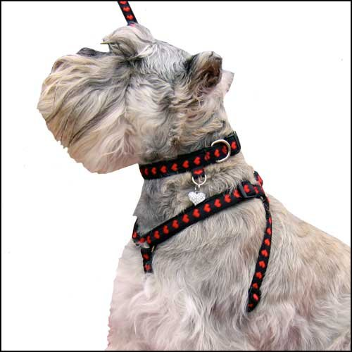 Red Hearts Step In Dog Harness