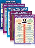 William Shakespeare - set of 9 Educational Wall Charts/Posters in Laminated paper (large 33.5'' X 24'')
