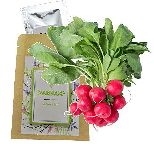 240+ Radish (Cherry Belle) Seeds for Garden Planting, Non-GMO Organic Heirloom Radish Seeds ()