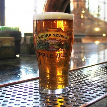 (Sierra Nevada Brewing Company - Pale Ale Tulip Glass)