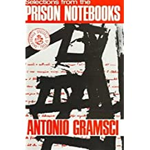 Selections From The Prison Notebooks (English Edition)