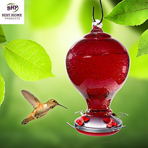 Amazon.com : Hummingbird Feeder     Hand Blown Glass Hummingbird Feeders |  STYLISH, DECORATIVE, UNIQUE | Cherry Blossom With Perch | 32 Ounces Of  Nectar ...