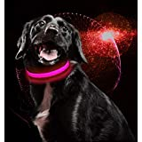 USB Rechargeable LED Dog Collar Flat Nylon Webbing Lighted Flashing Dog Collar Lights by MASBRILL Rechargeable Dog Collar LED Light-Up Safety Neck Loop (M, Pink)