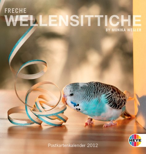 Freche Wellensittiche 2012. Postkartenkalender