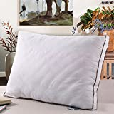 Pillows for Sleeping, Gusseted Quilted Bed Pillows with Hypoallergenic Cotton Cover, Luxury Feather Fabric Hotel Pillows, Standard Size 20'' x 26'', 1 pack