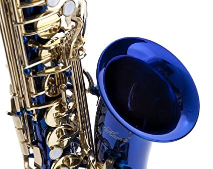 Mouthpiece and Reed Hawk WD-S416-BL Student Alto Saxophone with Case Blue