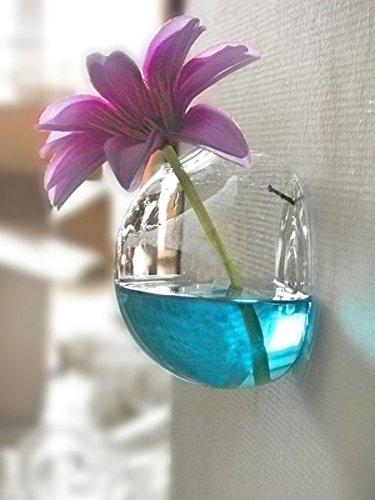 Amazon Half Round Glass Vase Terrarium Vases Flower Pots Wall