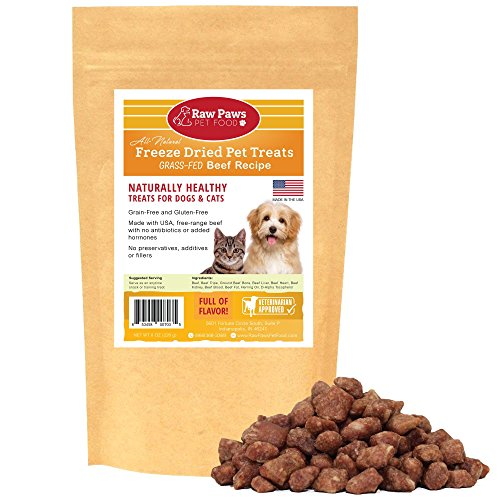 Raw Paws Free-Range Beef Freeze Dried Dog Treats Cat Treats – Made in USA Raw Freeze Dried Dog Treats – Grass-Fed Cows – Grain, Wheat, Antibiotic-Free Beef Cat Treats – All Natural Pet Snacks