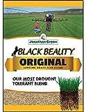 Jonathan Green 10317 Black Beauty Grass Seed Mix, 15 Pounds