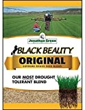 Jonathan Green 10317 Black Beauty Grass Seed Mix, 15 Pounds