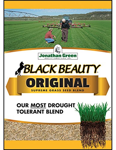 Jonathan Green 10317 Black Beauty Grass Seed Mix, 15 Pounds by Jonathan Green