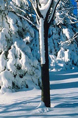 Winter Theme Journal Snow Covered Evergreens: (Notebook, Diary, Blank Book) (Seasonal Winter Photo Journals Notebooks Diaries) ebook
