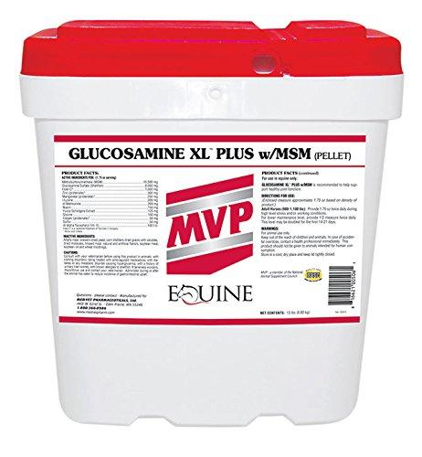 Glucosamine XL (plus) w/MSM 25 lb