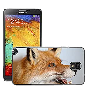 Super Stella Slim PC Hard Case Cover Skin Armor Shell Protection // M00149853 Fuchs Animal Portrait Stuffed // Samsung Galaxy Note 3 III N9000 N9002 N9005