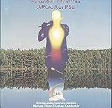 Mahavishnu Orchestra: Apocalypse LP VG+/VG++ UK CBS S 69076 2