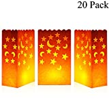 Cospring Luminary Bag Candle Bag Light Holder for Home Outdoor Christmas Wedding Reception Holiday Party and Event Occasion Decoration - Flame Resistant Paper - (20 Count)02