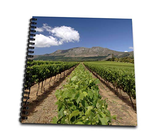 """3dRose db_207041_1 Vineyards of Groot Constantia Wine Estate, Cape Town, South Africa. Drawing Book, 8 by 8"""""""