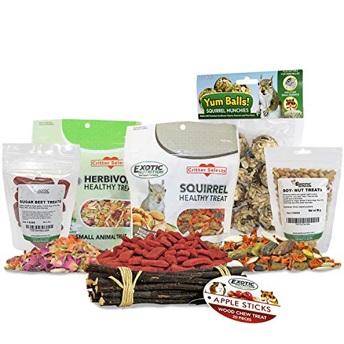 Squirrel Treat Bundle - Natural Healthy Assortment - Fruits, Veggies, Nuts, Seeds & Chews - Flying Squirrels, Ground Squirrels, Tree Squirrels, Chipmunks, Groundhogs, Prairie Dogs & Other Rodents