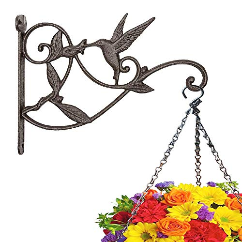 Plant Hanger Brackets Wall Mounted - Cast Iron Metal Wrought Plants Hangers Hanging Decorative Hummingbird Hooks Holder for Indoor Outdoor Flower Basket Pot Planter Bird Feeder Wind Chimes Lantern (Wrought Iron Wall Mounted Flower Pot Holder)
