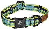Dublin Dog Co Eco Lucks Hampton Dog Collar, Montauk, 10 by 15-Inch, Small