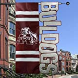 Cheap Team Sports America Collegiate Flag