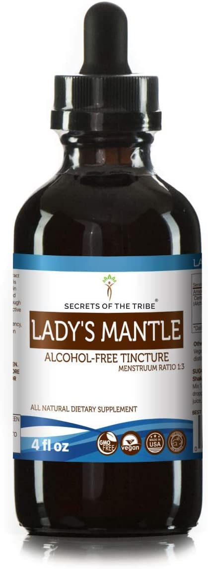 Lady s Mantle Alcohol-Free Liquid Extract, Organic Lady s Mantle Alchemilla vulgaris Dried Herb Tincture Supplement 4 FL OZ