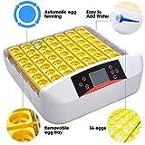 ReaseJoy Temperature Control Digital 56 Egg