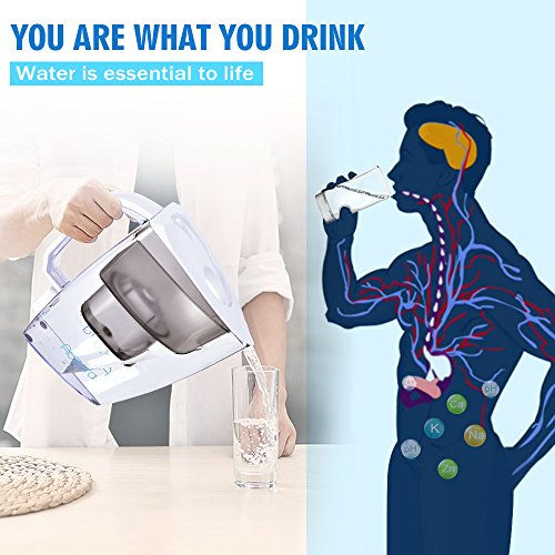 Review Water Filter Pitcher –