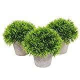 Fake Plant Decoration - Set of 3 Potted Artificial House Plants - Fake Plant Decor, Green Decorative Small Artificial Plants, for Home D?cor Indoor, with White Paper Pulp Pots - 5 x 4.2 x 5 Inches