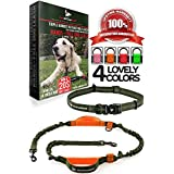 Pet Dreamland Hands Free Leash - For One/Two Medium to Large Dogs (up to 150lbs) - Running/Hiking/Dog Training - Heavy Duty Extra Long Bungee Lead - Waist Leashes for Dogs (One Dog, Khaki & Orange)