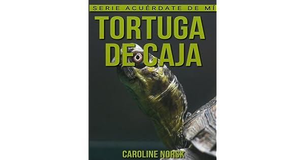 Amazon.com: Tortuga de caja: Libro de imágenes asombrosas y ...