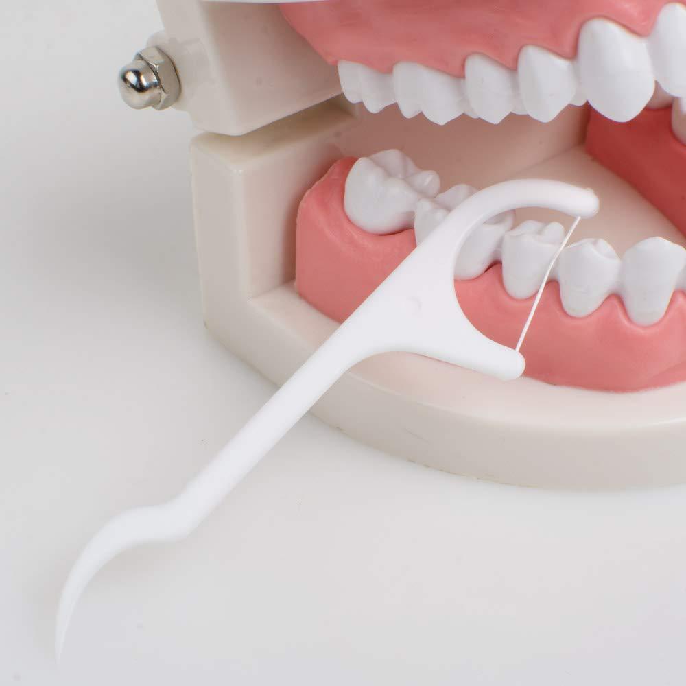 Pevor 50pcs Dental floss Picks, Dental Floss for Braces Interdental Picks Teeth Toothpicks Stick Oral Care Tooth Clean
