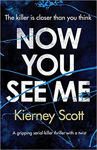 Now You See Me Book Cover