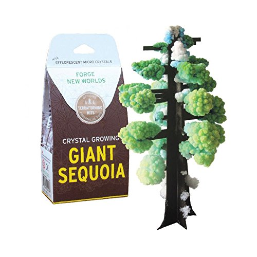 Copernicus Toys Crystal Growing: Giant Sequoia (Giant Sequoia Tree)