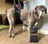 LOOBANI Portable Dog Sling for Back Legs, Hip