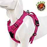 Chai's Choice Best Outdoor Adventure Dog Harness (X-Small, Fuchsia)