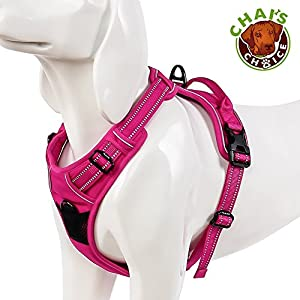 Chai's Choice Best Outdoor Adventure Dog Harness. 3M Reflective Vest with Two Leash Attachments. Caution – Please Measure Dog Before Ordering! Matching Leash and Collar Available