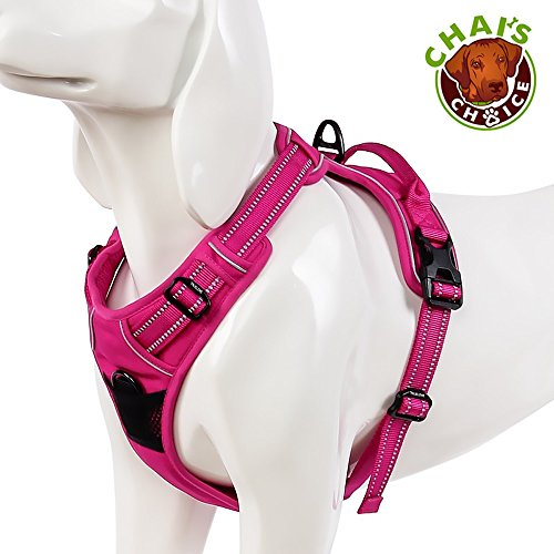 (Chai's Choice Best Outdoor Adventure Dog Harness (Medium, Fuchsia))