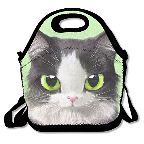 BesHomes Perfect Gifts - Cute Lovely Kitten Cat Green Lunch Bags Insulated Travel Picnic Lunchbox Tote Handbag With Zipper Carry Handle Shoulder Strap For Women Teens Girls Kids Adults (Sox Art Glass)