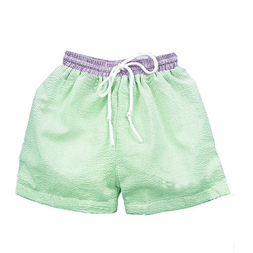 CFP Baby Boys Seersucker Swim Trunks with Purple Waist - Seersucker Swimsuit for Kids, Purple Seersucker Dawstring Waist Band, Size 12M - 6T (Green, 5/5)