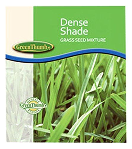 Barenbrug USA 83650 Dense Shade Seed, 50 lb -