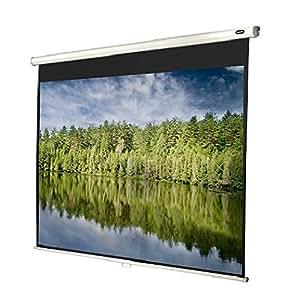 Celexon 1090388 pantalla de proyección - Pantalla para proyector (Negro, Color blanco, Color blanco)