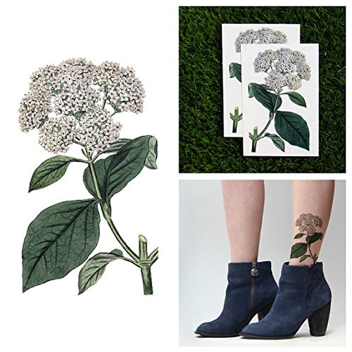 tattify-viburnum-flower-temporary-tattoo-shrub-off-set-of-2