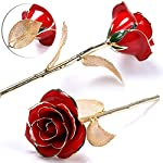 KLUCKYI-Upgrade-24K-Gold-Rose-with-Gift-Box-is-Unique-Gift-for-Mothers-Day-Valentines-Day-Christmass-Day-Lovers-Birthday-Goldleaf-with-Stand