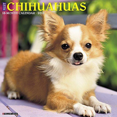 Just Chihuahuas 2018 Calendar