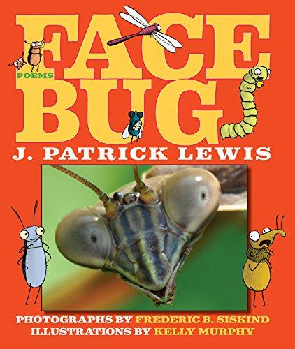 (Face Bug)