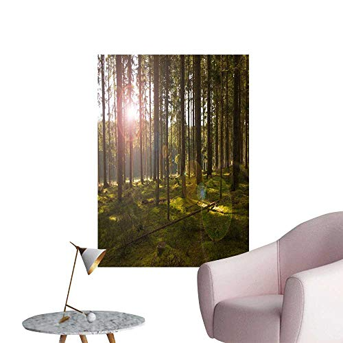 SeptSonne Wall Decals The Woods in The Sun Environmental Protection Vinyl,16