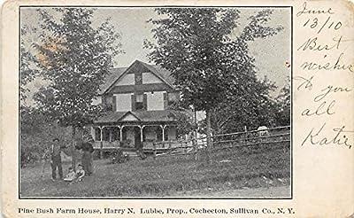 Pine Bush Farm House Harry N Lubbe Cochecton, New York, Postcard