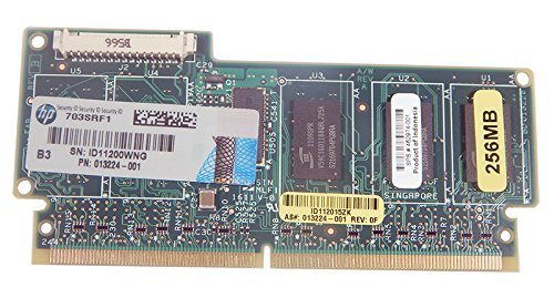 HP 256MB P-Series Cache Memory 534108-B21 462968-B21 462974-001 by HP (Image #1)