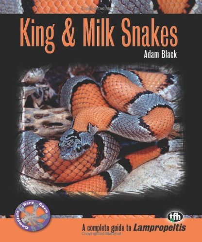 King & Milk Snakes (Complete Herp Care)